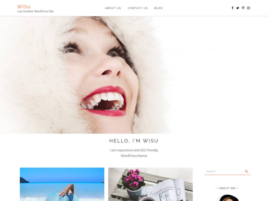 wisu wordpress blog theme honar systems